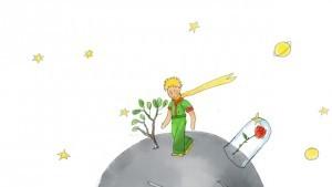 Stalkt De Kleine Prins Jou Ook Geluk Voor Beginners